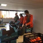 Medewerkers van de ING Bank helpen mee bij Hoop voor Morgen